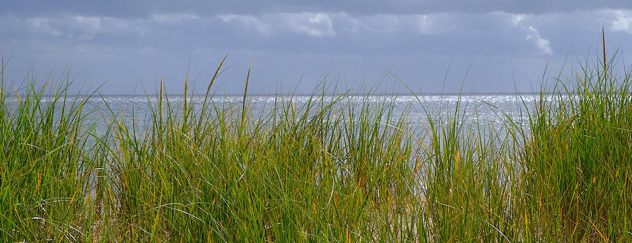 Stormy seas or calm skies ahead.